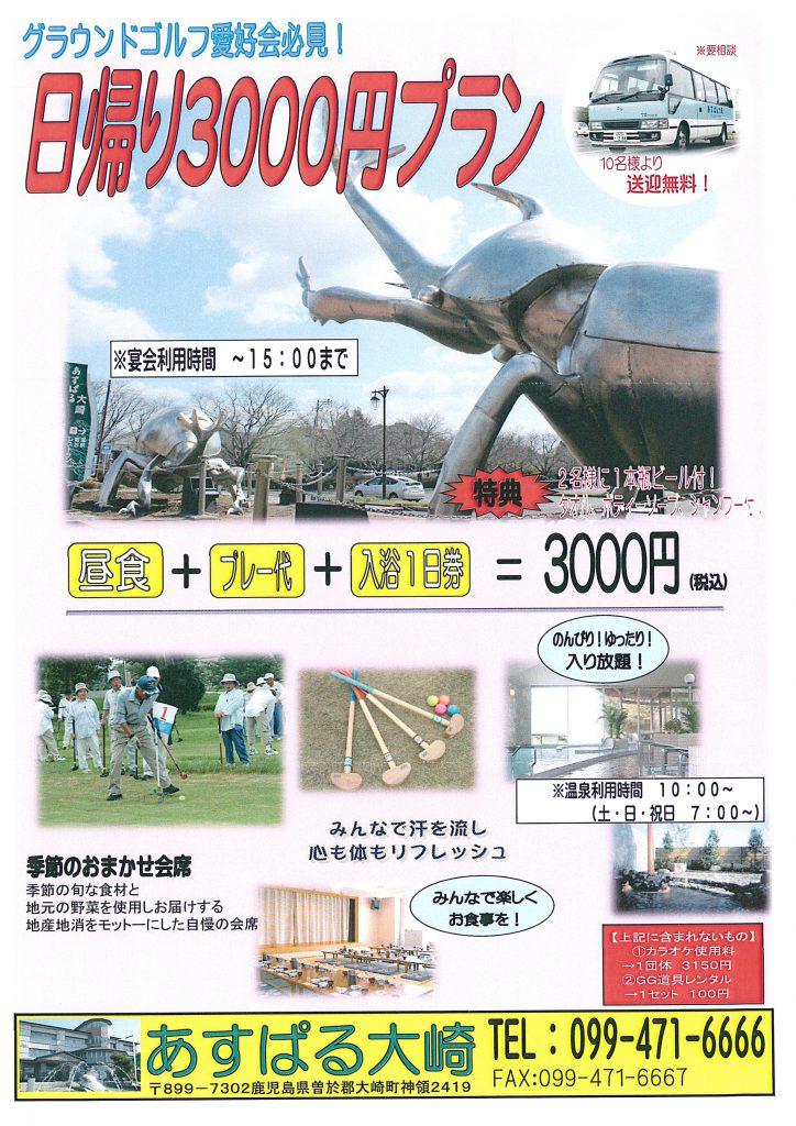 日帰り3000円プラン